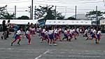 27913tamaho